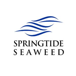 Springtide Seaweed
